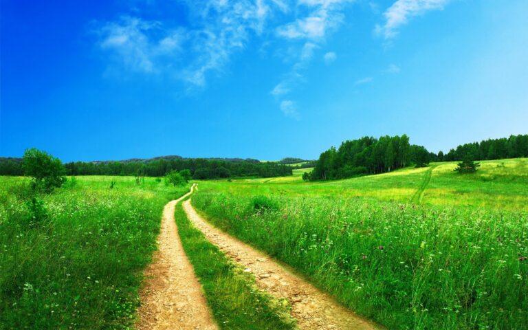 Wie Du gute Gewohnheiten etablierst und nicht nach kurzer Zeit wieder abbrichst