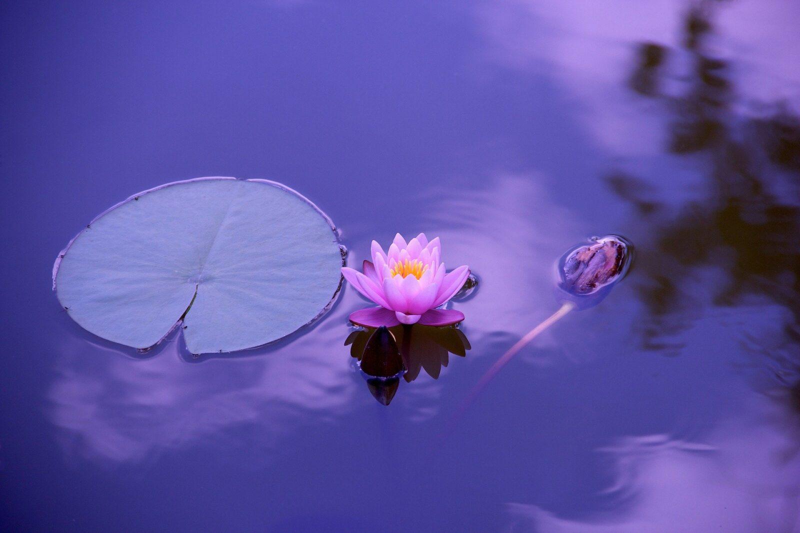 21 Rituale für mehr innere Ruhe
