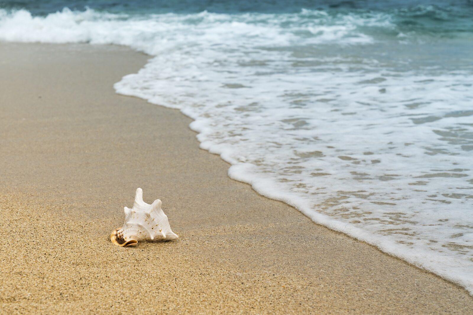 Minimalistischer Frugalismus: 7 Wege, wie Du sparsam und großzügig zugleich sein kannst